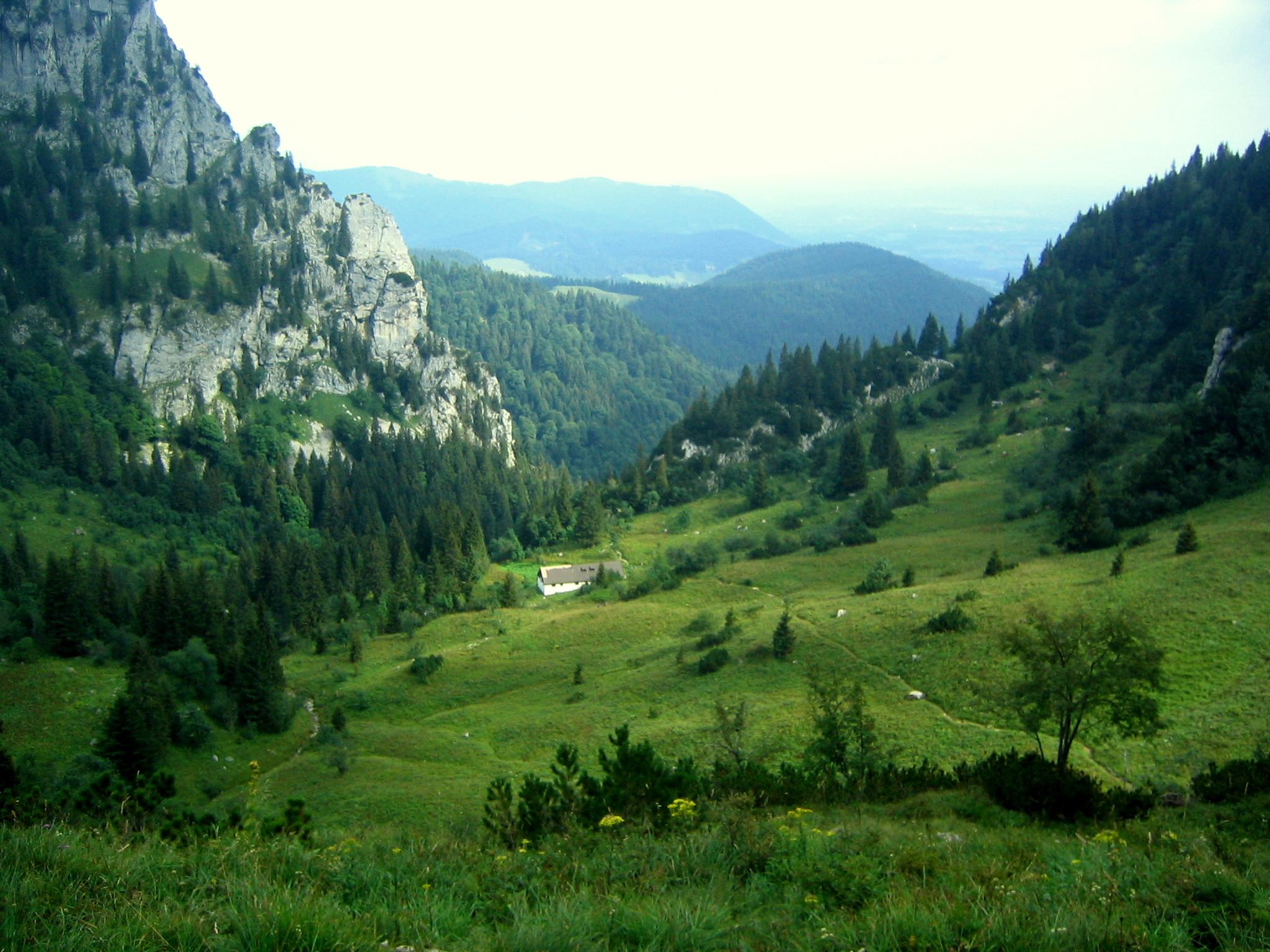 Aufstieg zur Benediktenwand über den Probstkessel