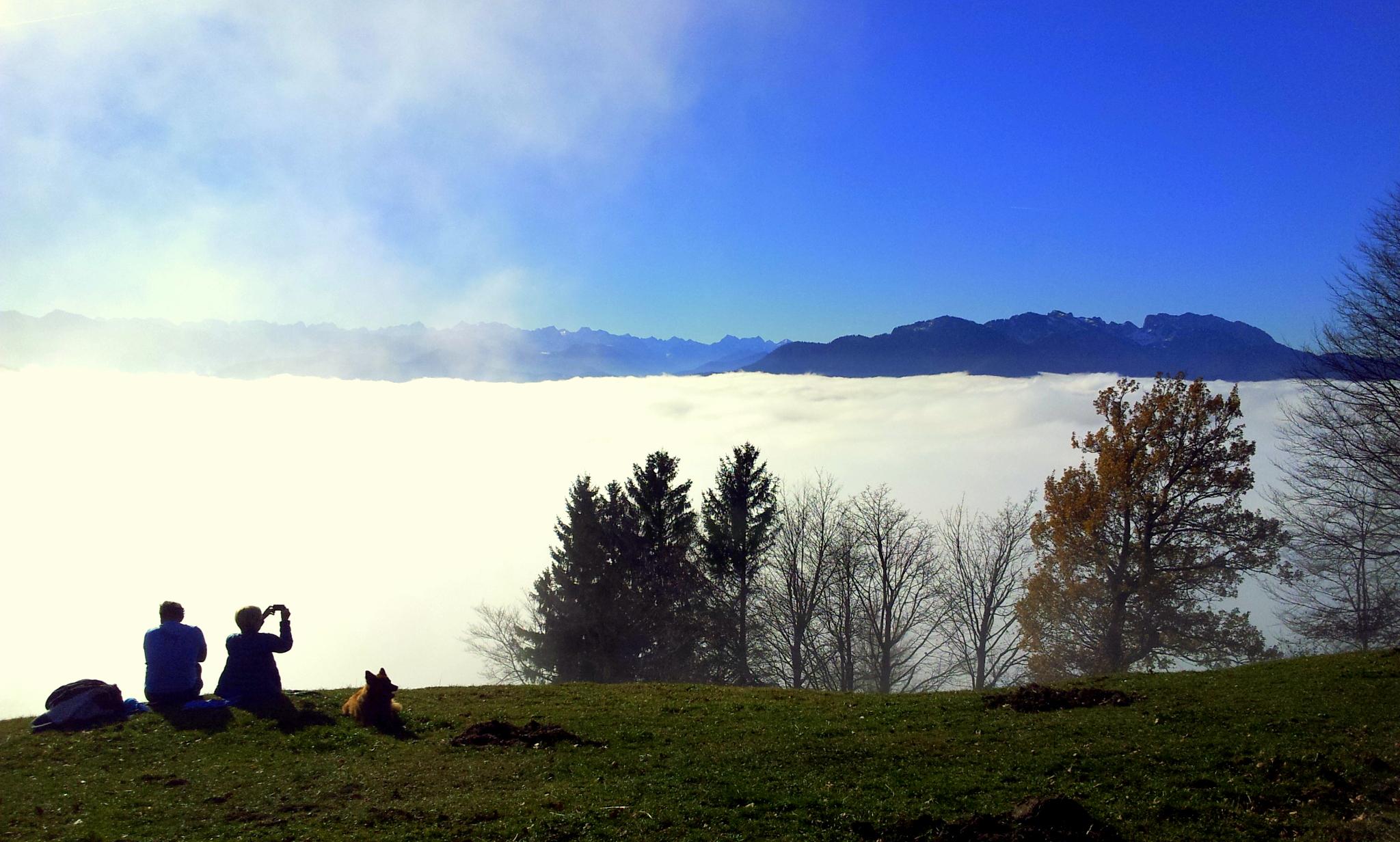 Sundraten bei Nebelstimmung