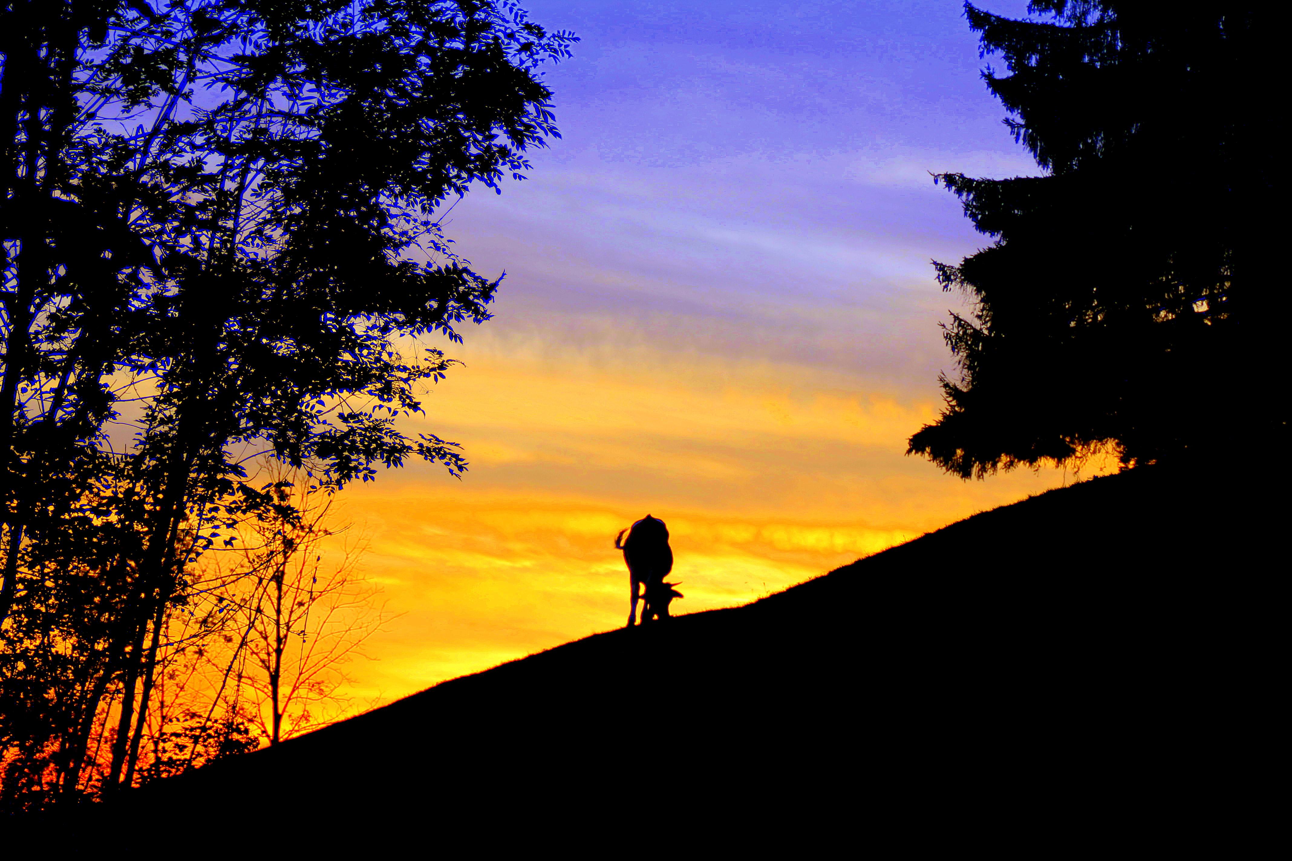 Der magischer Moment und warum Berge der beste Ort dafür sind