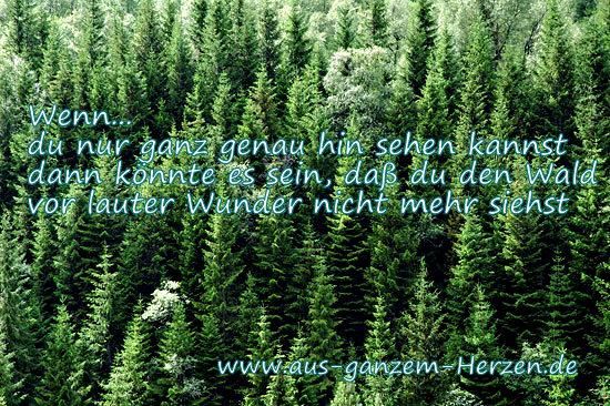 AGH Weisheit2