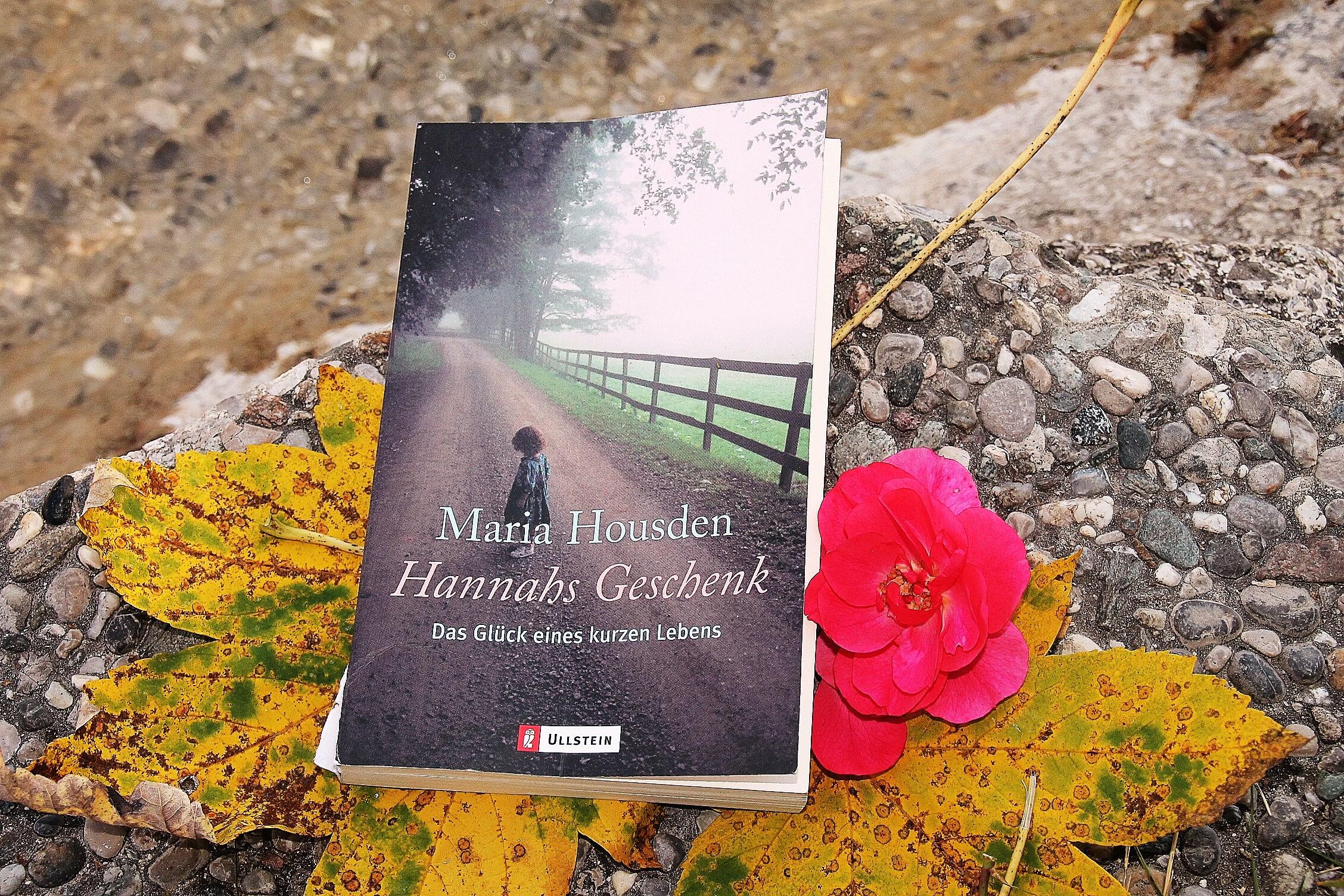 Hannah's Geschenk